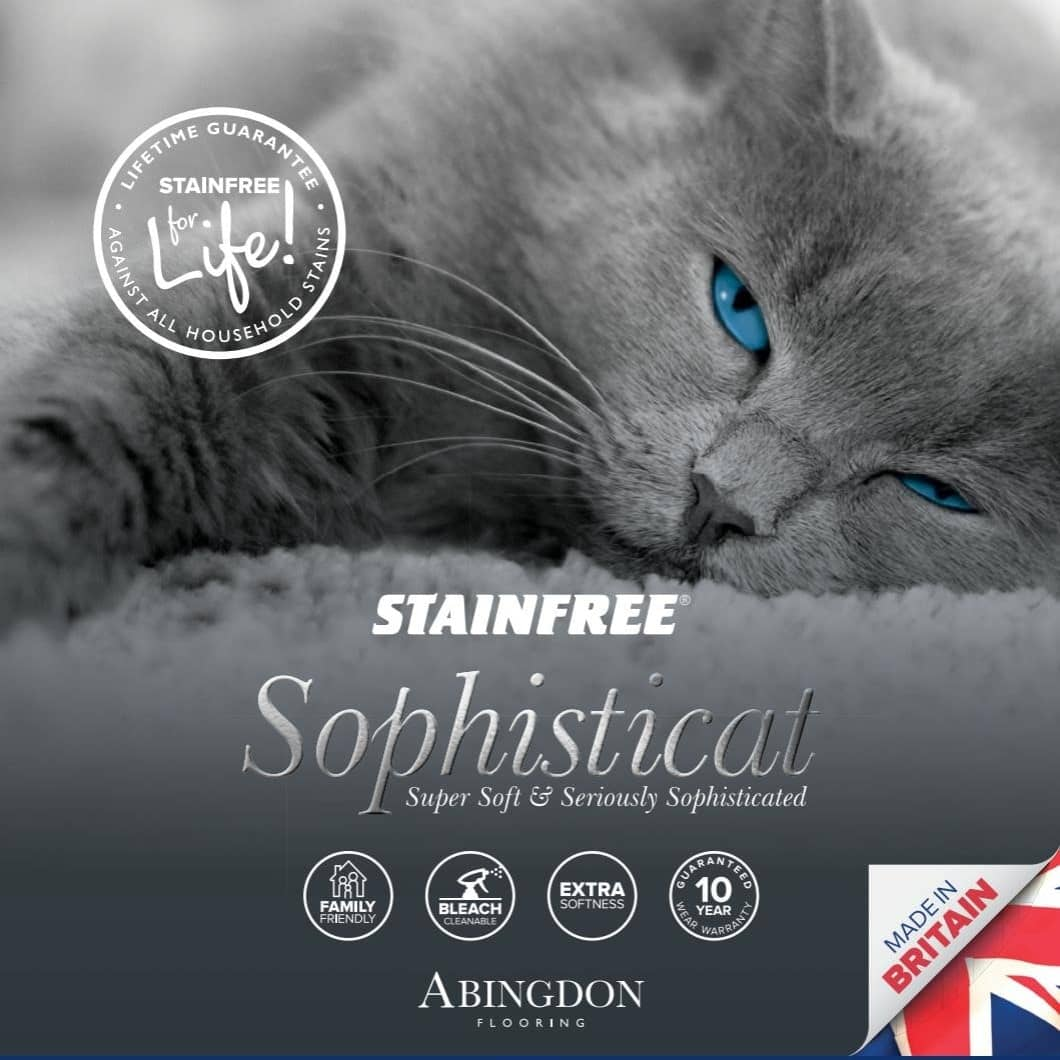 Abingdon Sophisticat Stainfree Collection At Floormaster Barnsley